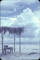 [Tiki huts provided shelter from the sun along the Sanibel beaches]