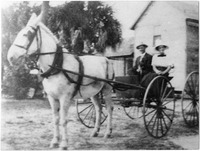 Couple on a Mule Drawn Wagon