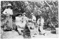 Tayntor Family Having a Picnic the Mangroves