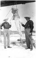 Charles Tayntor, Jr. and Father Examine a Shark