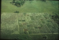 [Aerial of mowed paths]