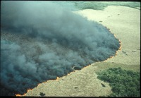 [Aerial, Cordgrass lightning fire]