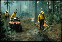 [Fire Crew using Drip Torch]