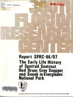 early life history of spotted seatrout, red drum, gray snapper, and snook in Everglades National Park, Florida