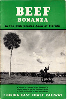 Beef Bonanza in the Rich Glades Area of Florida