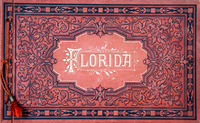 souvenir of Florida