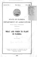 What and when to plant in Florida