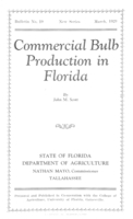 Commercial bulb production in Florida