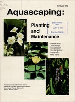 Aquascaping: planting and maintenance