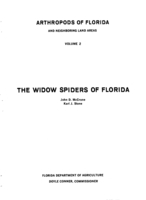 The widow spiders of Florida