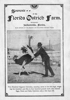 Souvenir of the Florida Ostrich Farm, Incorporated, Jacksonville, Florida