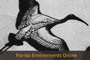 Florida Environments Online